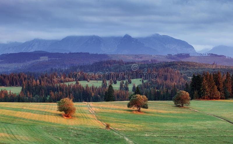 SLOVAQUIE paysage-dans-pieniny-slovaquie-61744195